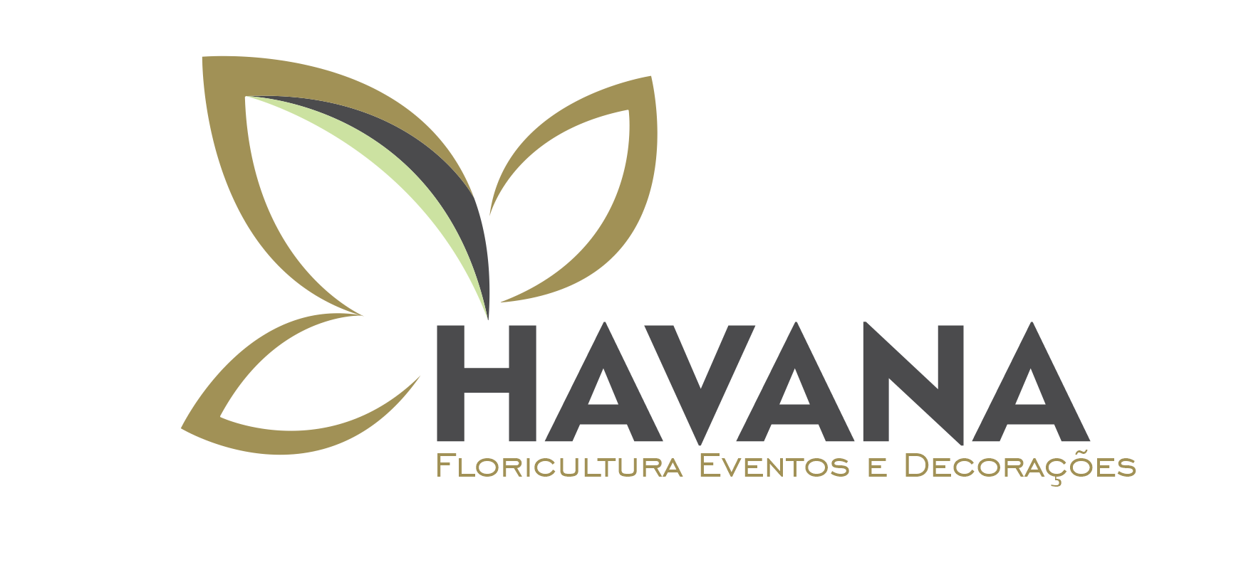 Havana Eventos